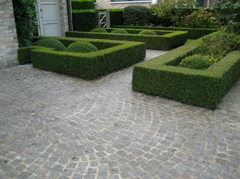 Pavé granit du Portugal